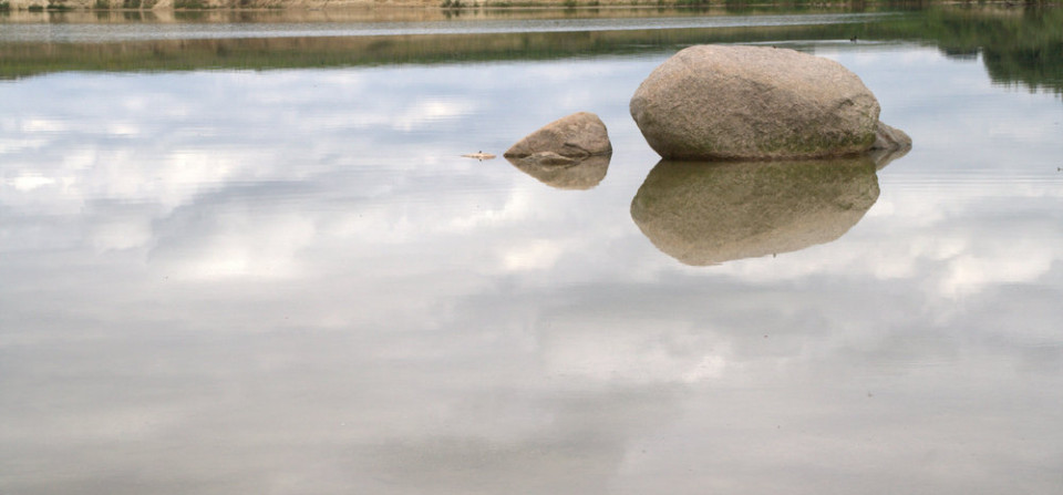 A rock in a pond