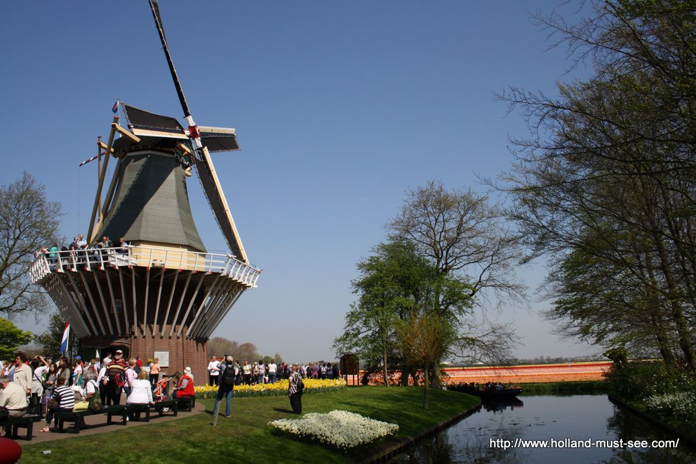 Windmill in flower park Keukenhof